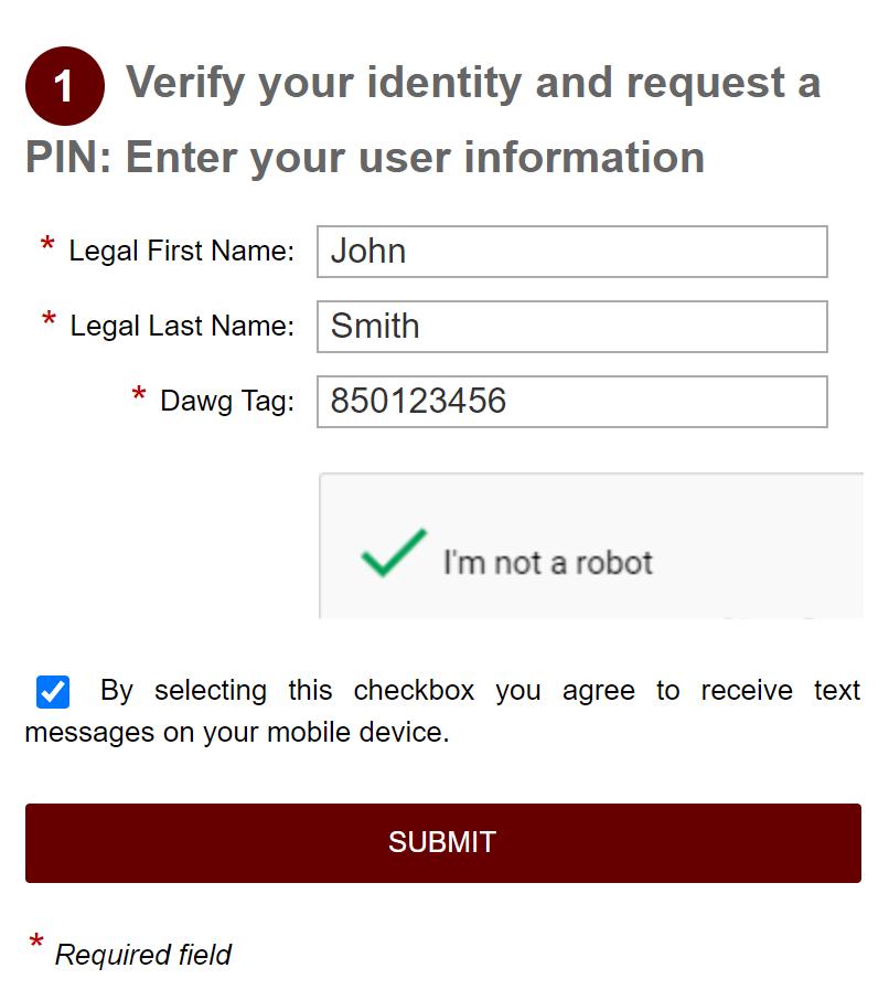 PIN Password Reset Form